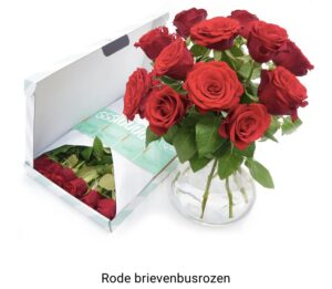 Bloomgo post rode rozen